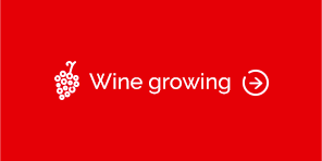BTN_wine-growing