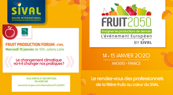 fruit2050 sival20 citfl forum